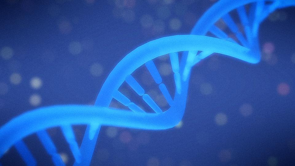 blender DNA 物質を作成